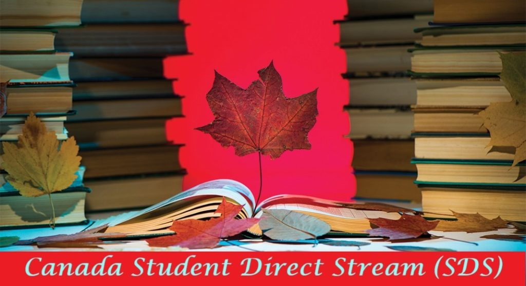 Apply for a study permit with the Student Direct Stream